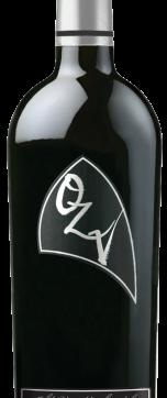 OZVRZ-BS-new-307x1024