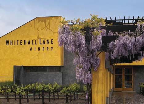 Whitehall_Lane_winery_Napa_Valley.112618